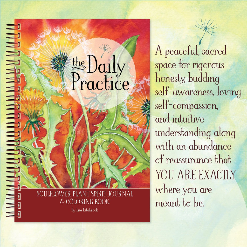 The Daily Practice Journal