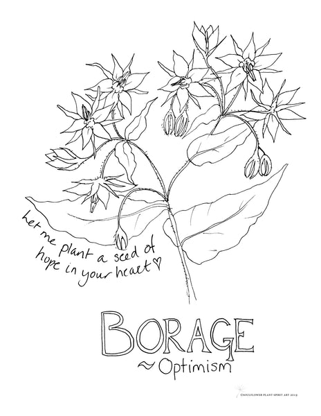 Borage (Optimism) Coloring Page