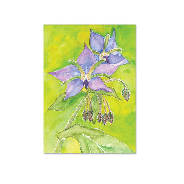 Borage (Optimism) Original Painting