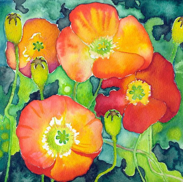 California Poppy Mounted Print