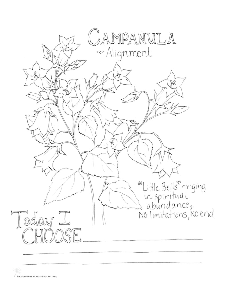 Campanula (Alignment) Coloring Page