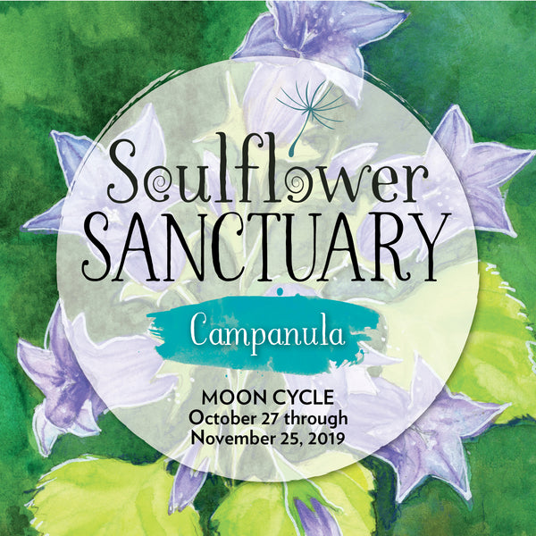 Campanula (Alignment) Moon Cycle Mentorship