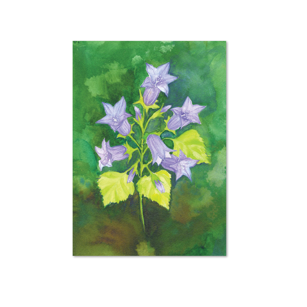 Campanula (Alignment) Original Painting