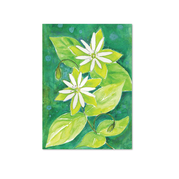 Chickweed (Tolerance) Original Painting