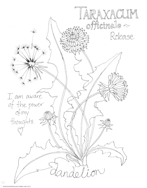 Coloring Pages My Soulflower