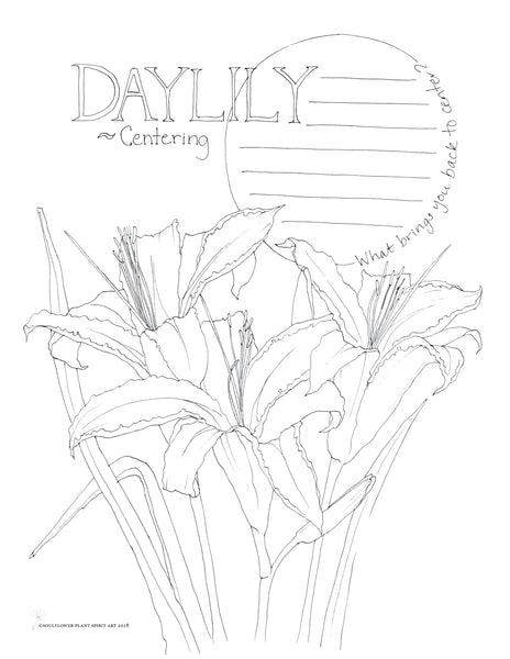 Daylily (Centering) Coloring Page