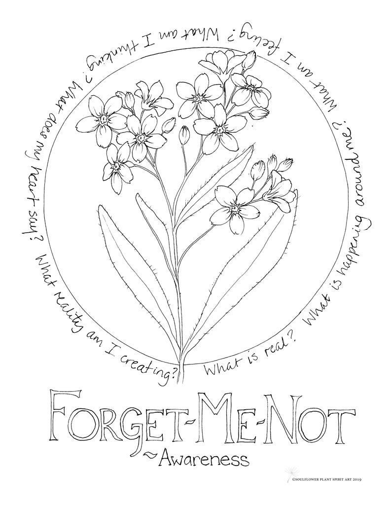 Forget-Me-Not (Awareness) Coloring Page