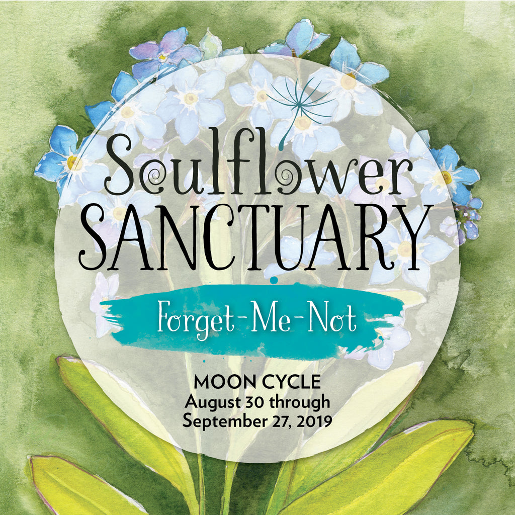 Forget-Me-Not Moon Cycle Mentorship