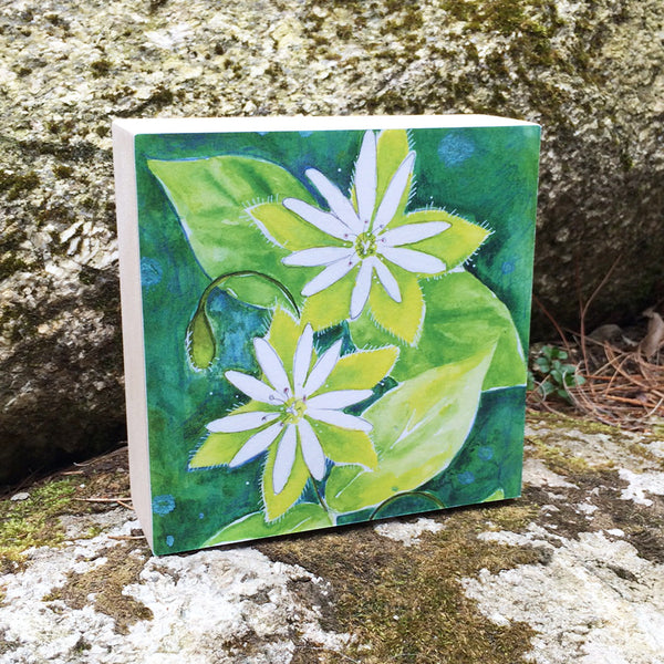 Chickweed (Tolerance) Mounted Print