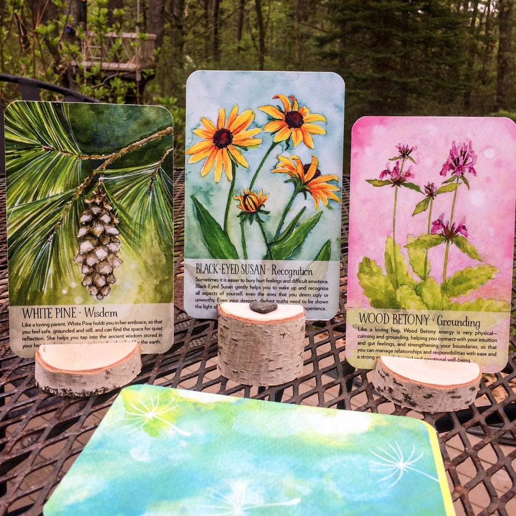 Soulflower Rustic Card Stands