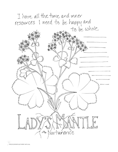 Lady's Mantle (Nurturance) Coloring Page