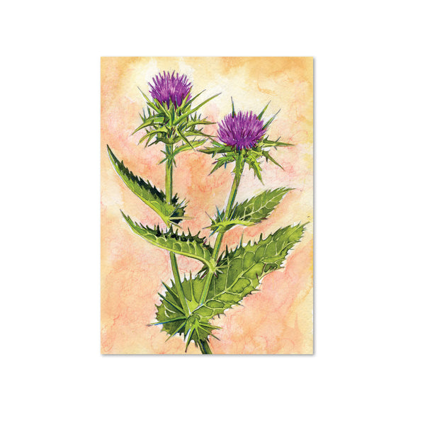 Milk Thistle (Forgiveness) Original Painting