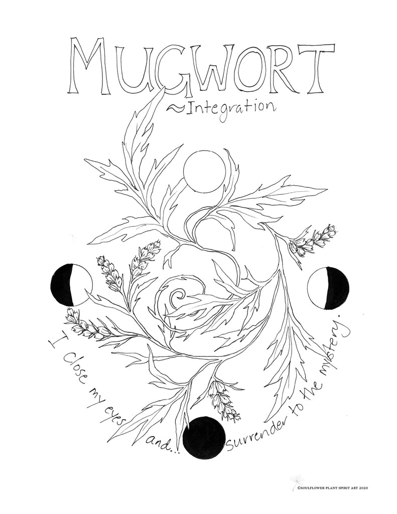 Mugwort (Integration) Coloring Page