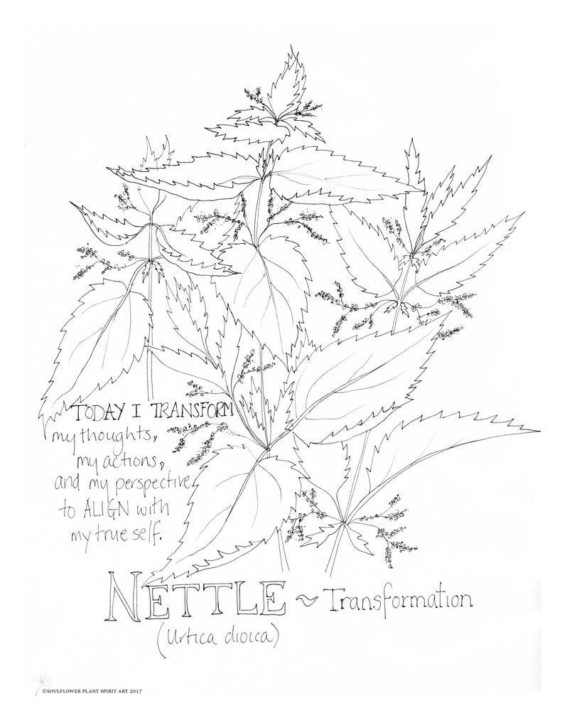Nettle (Transformation) Coloring Page