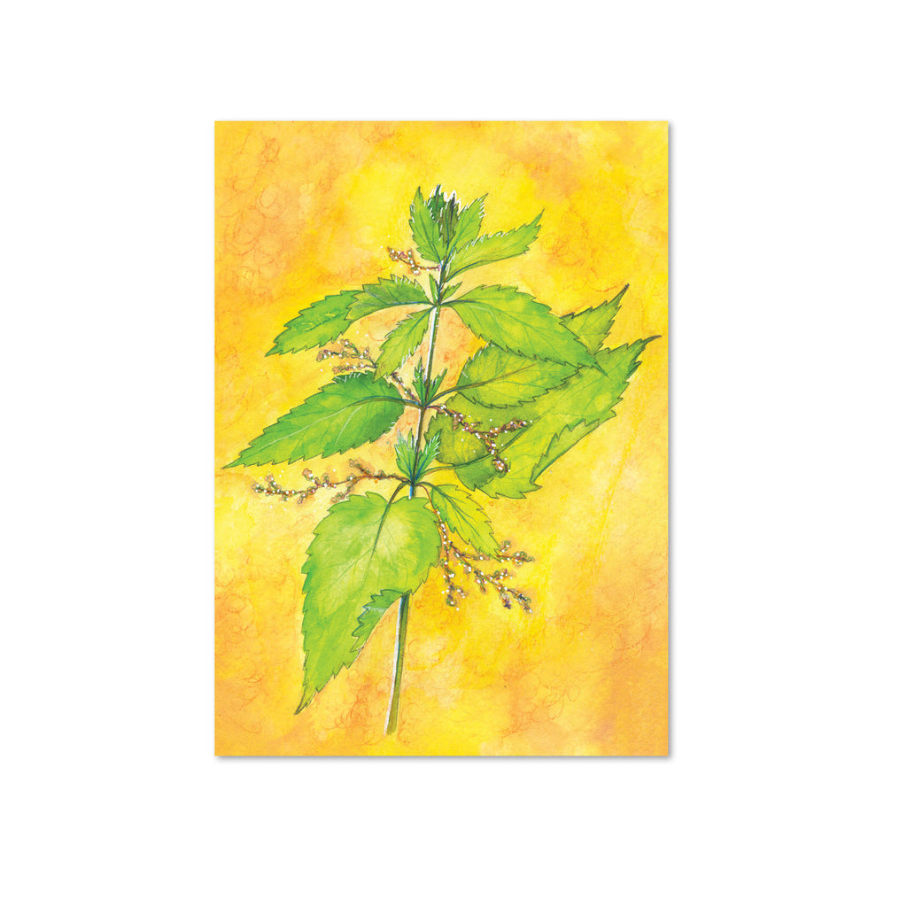 Nettle (Transformation) Original Painting