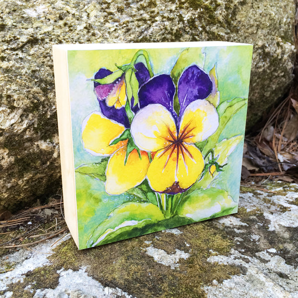 Pansy Mounted Print