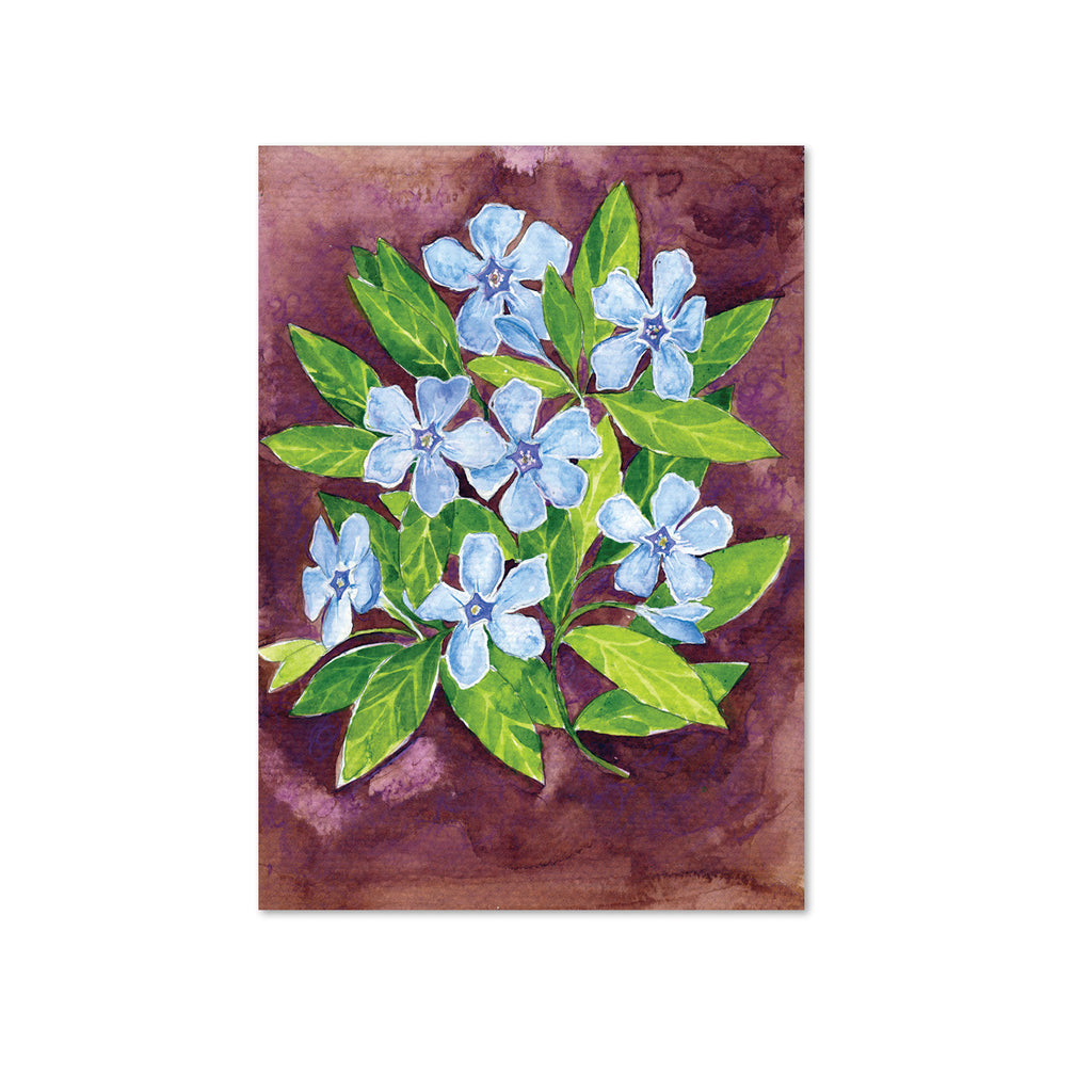 Periwinkle (Intertwining) Original Painting