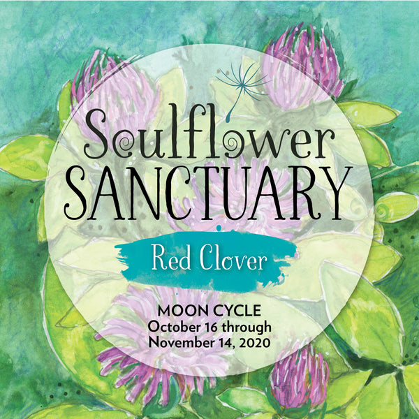 Red Clover (Tranquility) Moon Cycle Mentorship