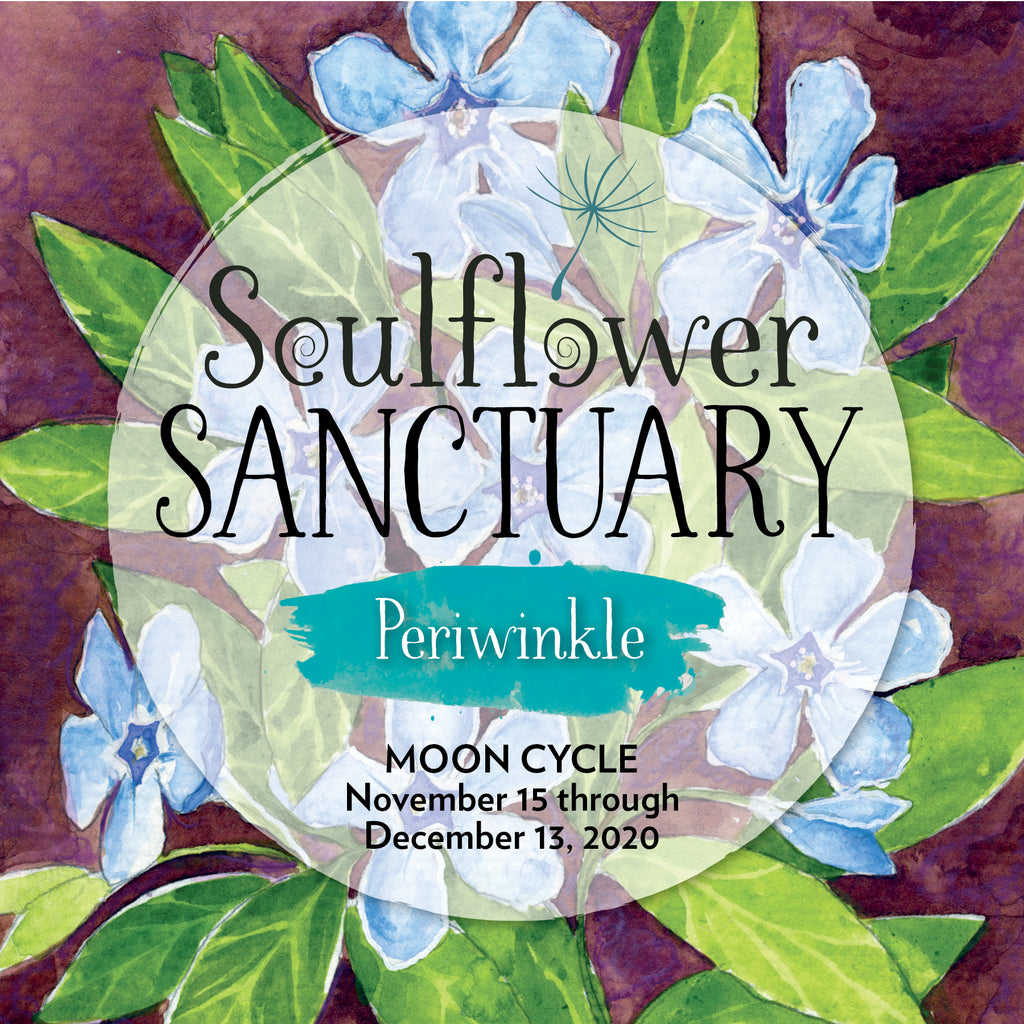 Periwinkle (Intertwining) Moon Cycle Mentorship