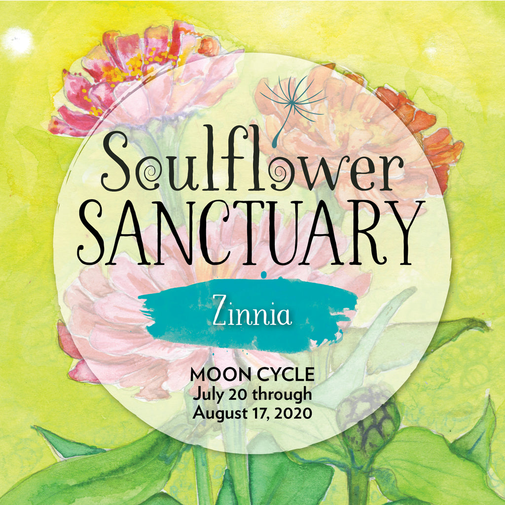 Zinnia (Light Heartedness) Moon Cycle Mentorship