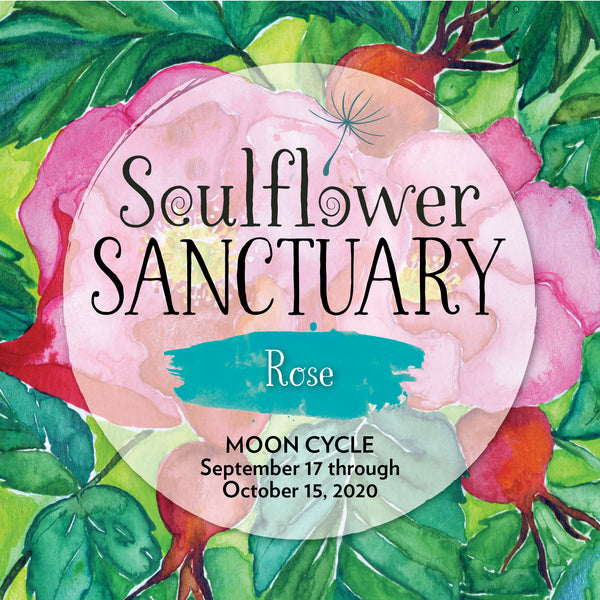 Rose (Joy) Moon Cycle Mentorship
