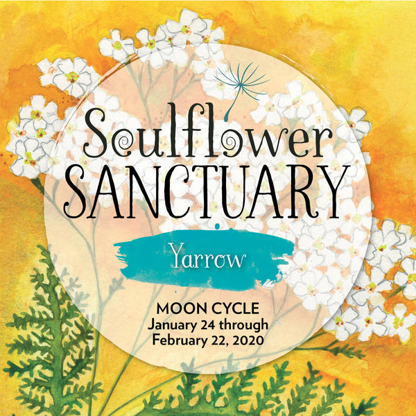 Yarrow (Boundaries) Moon Cycle Mentorship