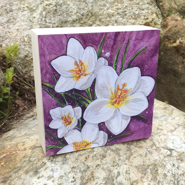 Crocus Mounted Print