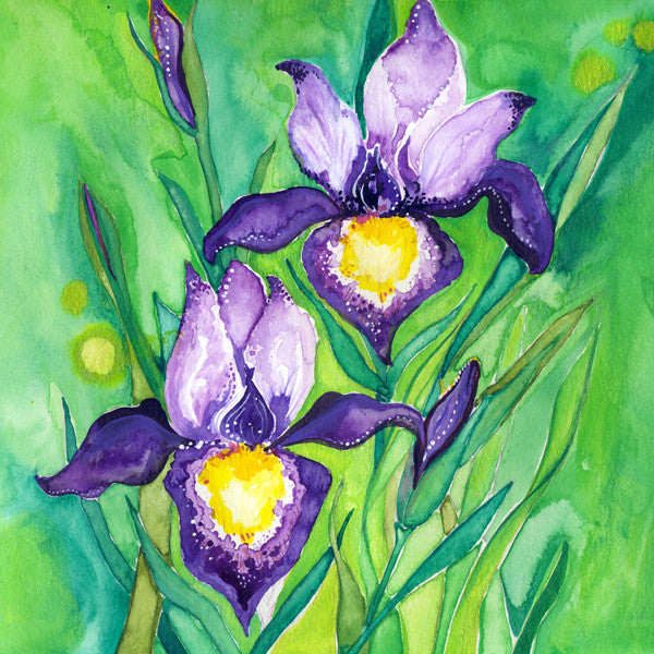 Iris (Inspiration) Mounted Print