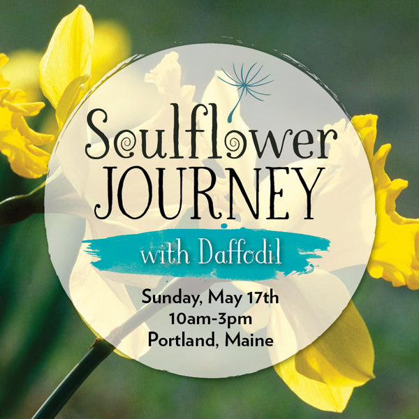 A Soulflower Journey with Daffodil (PERCEPTION)