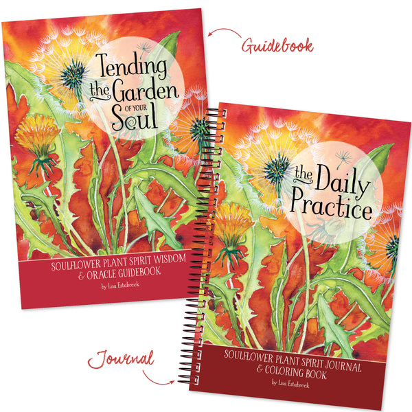Guidebook & Journal Bundle