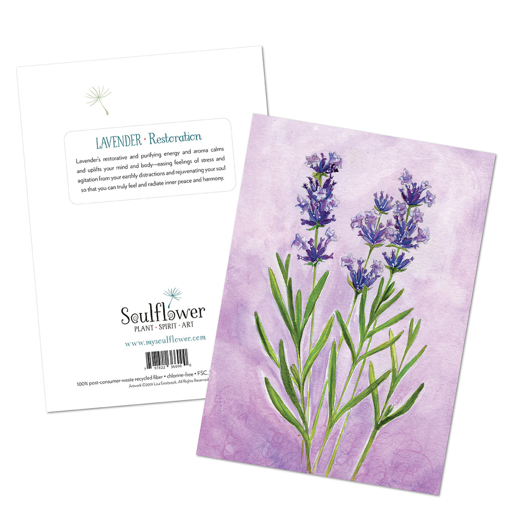 Lavender (Restoration) Card