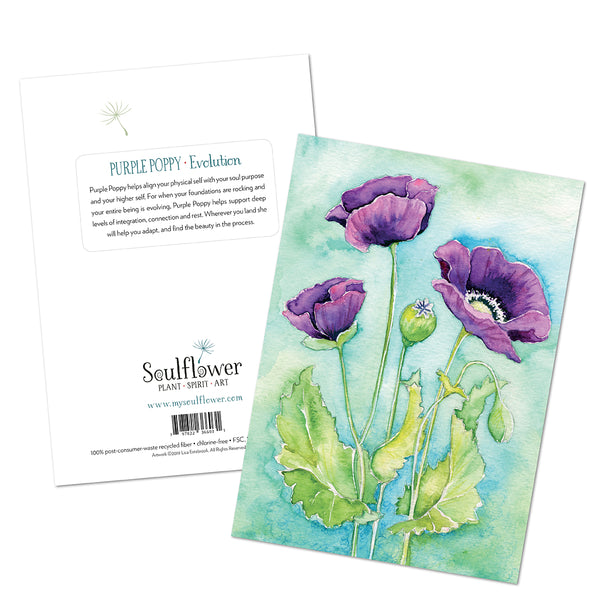 Purple Poppy (Evolution) Card