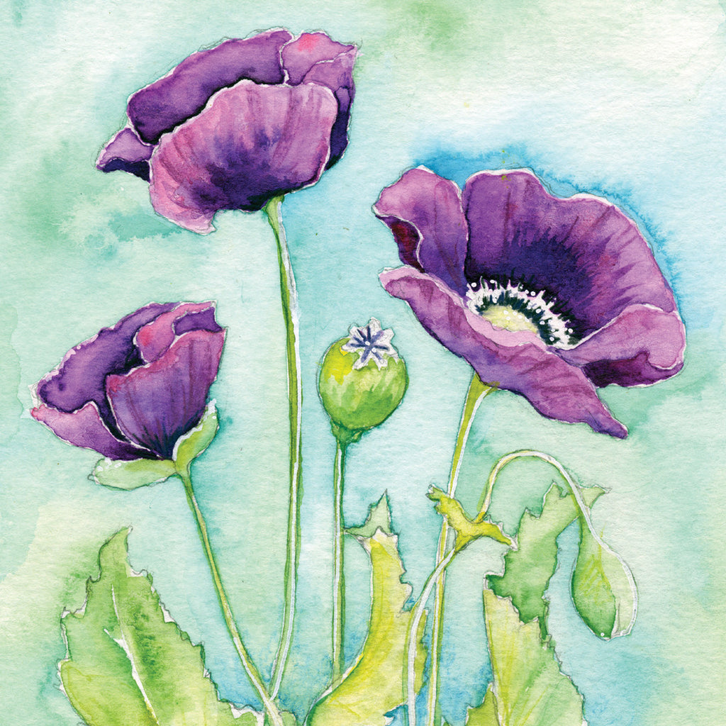 Purple Poppy Mounted Print