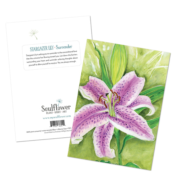 Stargazer Lily (Surrender) Card