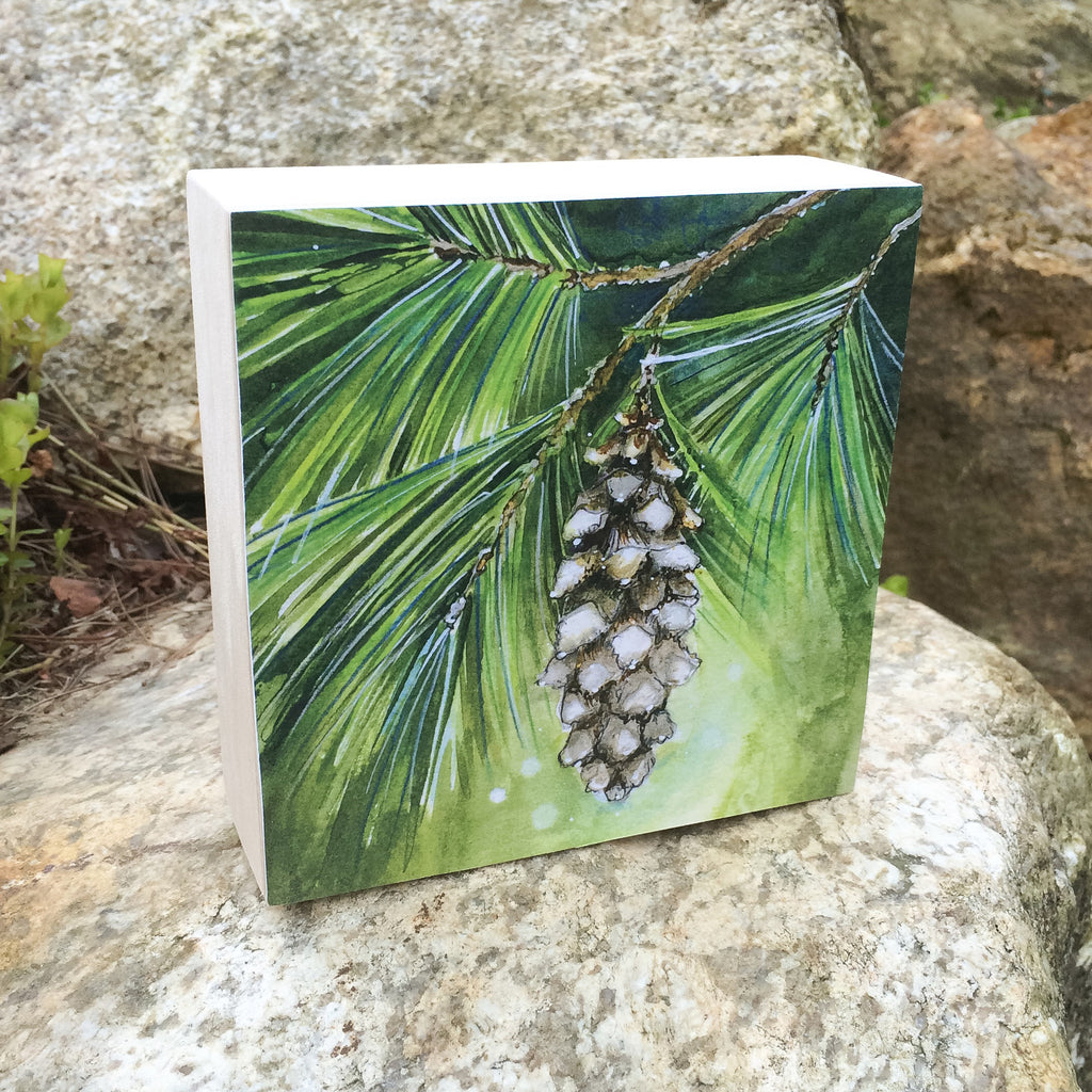 White Pine Mounted Print