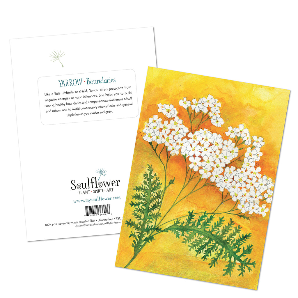 Yarrow (Boundaries) Card