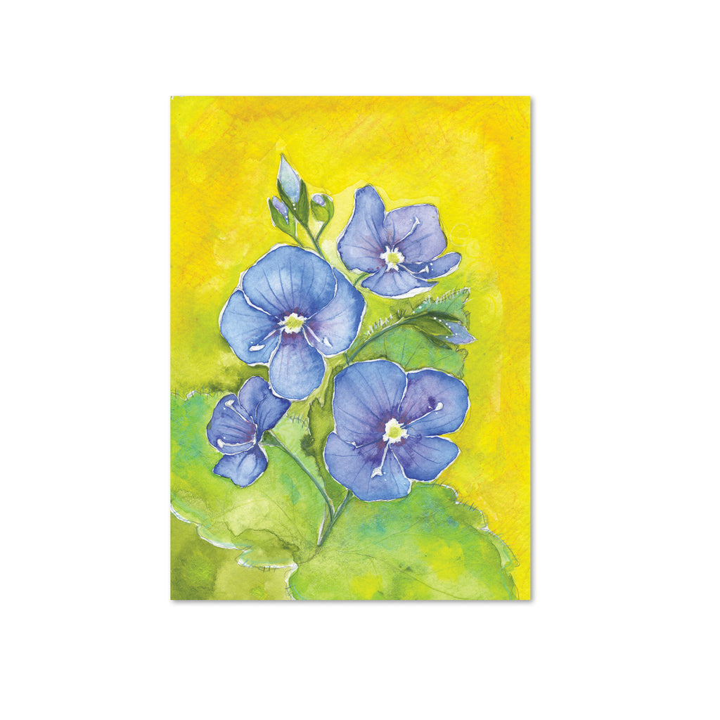 Speedwell Original Painting