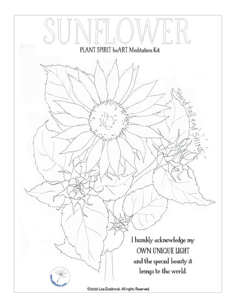 Sunflower PLANT SPIRIT heART MEDITATION KIT