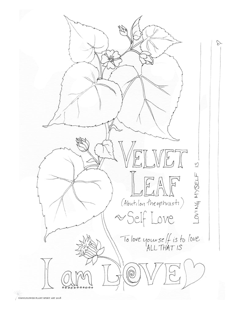 Velvet Leaf (Self Love) Coloring Page