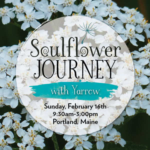 A Soulflower Journey with Yarrow (BOUNDARIES)
