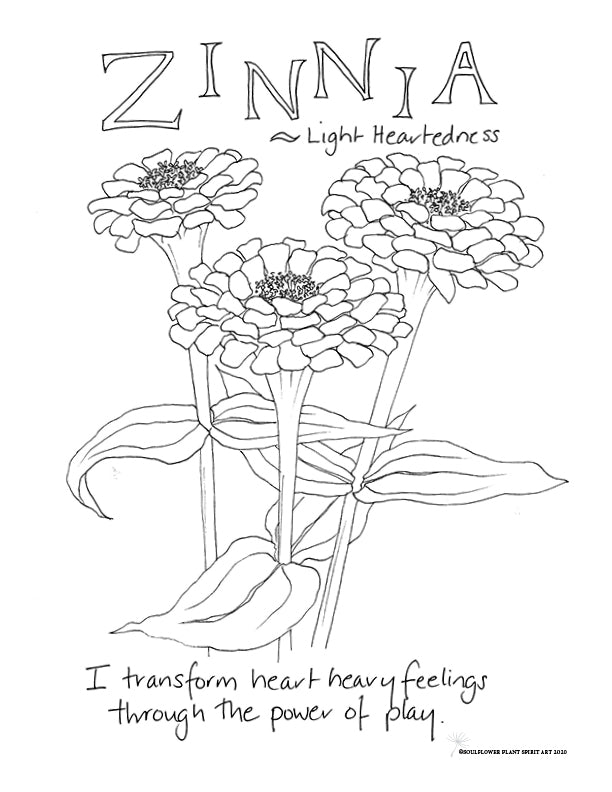Zinnia (Light Heartedness) Coloring Page