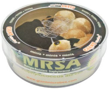 Giant Microbes MRSA (Multiple-Resistant Staph Aureus) 3 Mini Microbes in a Petri Dish