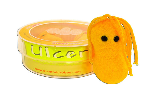Giant Microbes Ulcer (Helicobacter pylori) - 3 Mini Plush Microbes in a Petri Dish