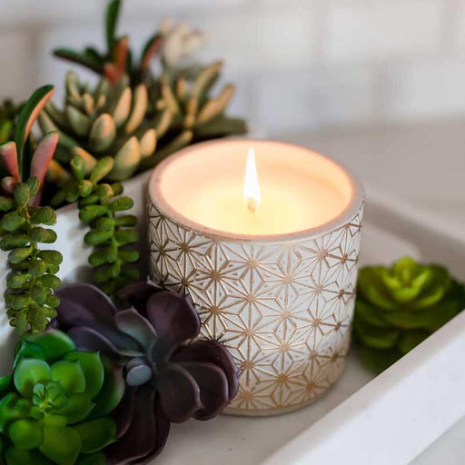 Garden Terrace Vanilla Orchid Concrete Candle lifestyle | MILK MONEY | milkmoney.co