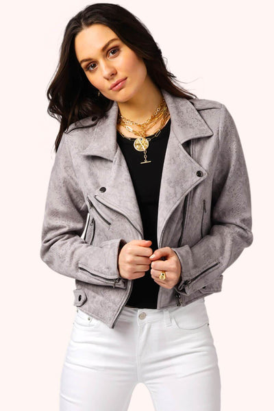 Ivy Snake Print Faux Suede Moto Jacket grey MILK MONEY