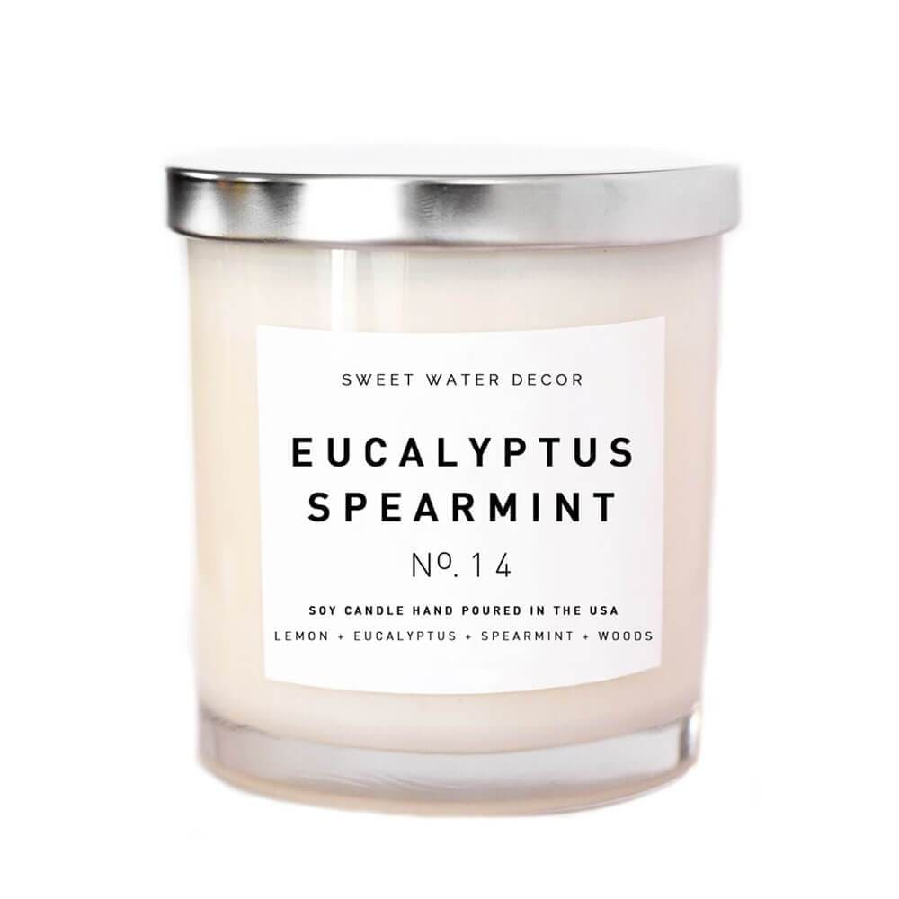 Sweet Water Decor Eucalyptus and Spearmint Soy Candle MILK MONEY
