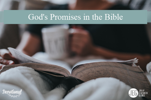 God's Promises in the Bible by Elizabeth George
