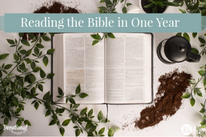 Reading the Bible in One Year with Elizabeth George