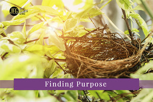 Finding Purpose After the Nest is Empty by Elizabeth George