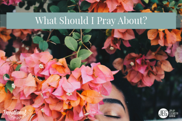 What Should I Pray About by Jim and Elizabeth George